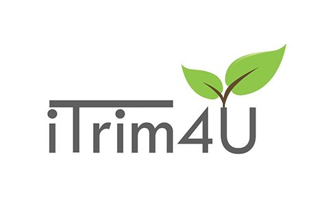 iTrim4u.com - hedge trimming